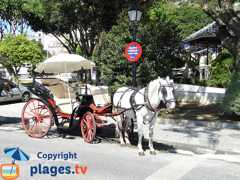 promenade à Mijas en âne