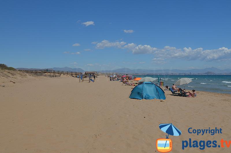 Plage dans les dunes d'Arenals del Sol - Costa Blanca