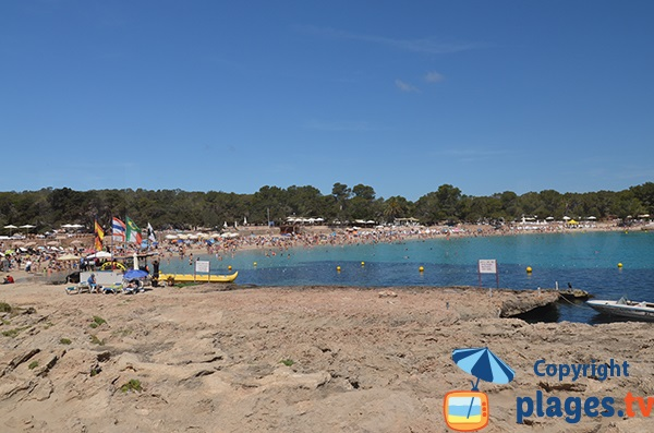 Photo de la plage de Cala Bassa à Ibiza