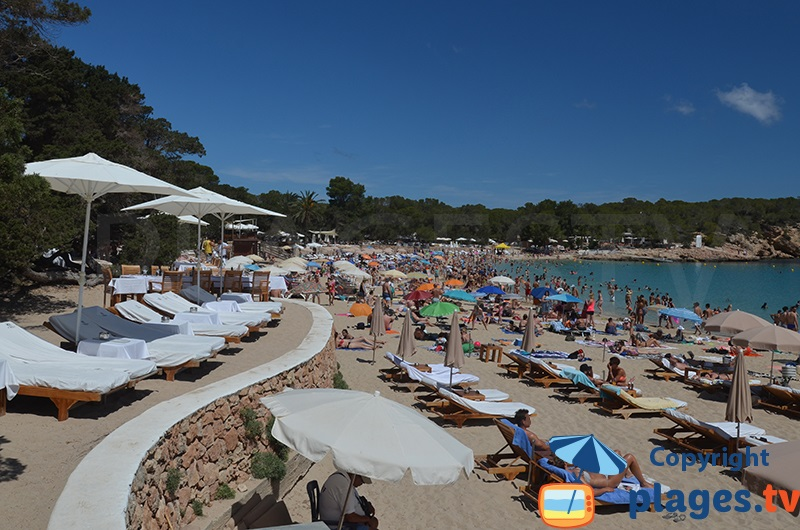 Cala Bassa: la plage tendance d'Ibiza ?