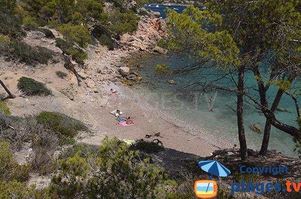 Crique autorisée aux chiens à Majorque - Cala Blanca
