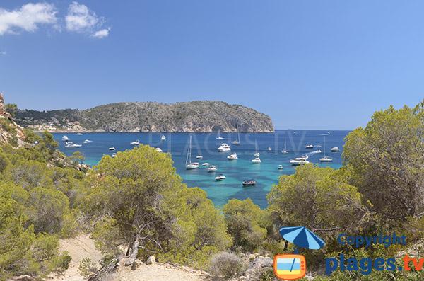 Photo de la baie autour de la Cala Blanca à Majorque