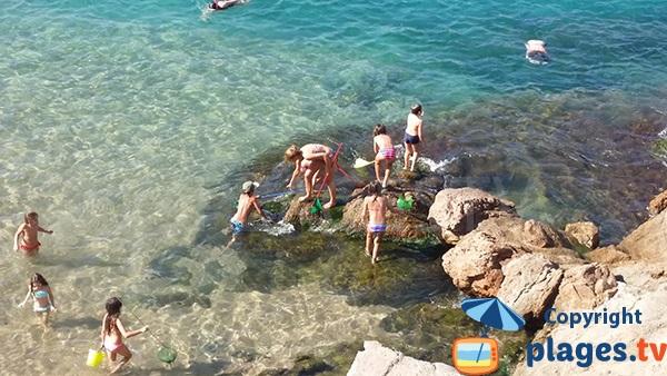 Rochers autour de la plage d'Es Codolar - Tossa de Mar