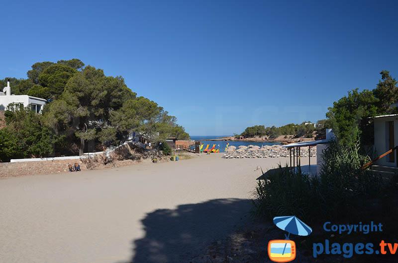 Belle crique à Sant Antoni à Ibiza