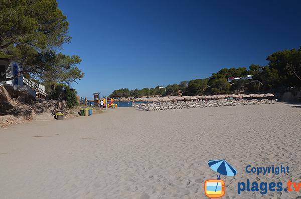 Photo de la plage de la Cala Gracio à Sant Antoni de Portmany - Ibiza
