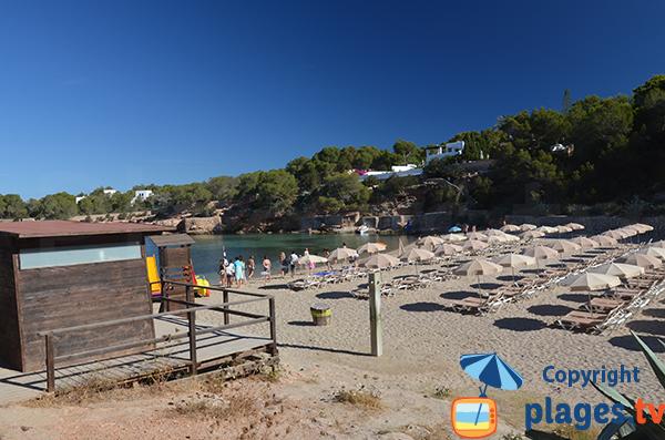 Location de chaises longues dans la crique de Gracio à Sant Antoni de Portmany - Ibiza
