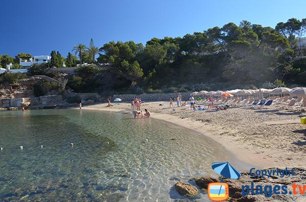Baignade dans la cala Gracio à Sant Antoni - Ibiza