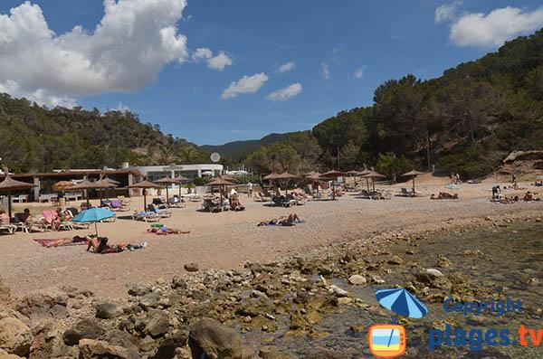 Plage privée sur la plage de Moli à Ibiza