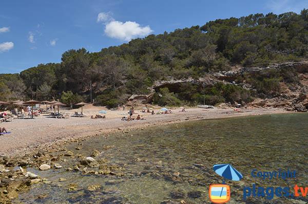 Baignade dans la Cala Moli à Ibiza