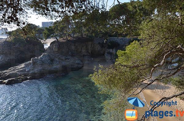 Crique à côté de la plage de Rovira