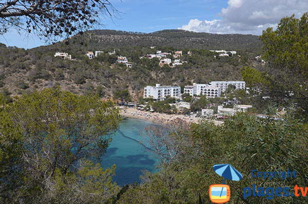 Environnement de la Cala Vadella d'Ibiza
