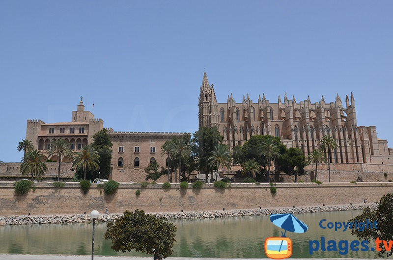 Cathédrale de Majorque avec le palais de l'Almudaina