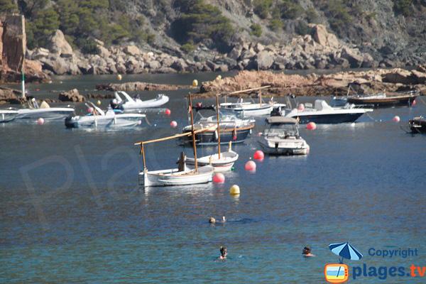 bateaux traditionnels à Begur - Espagne
