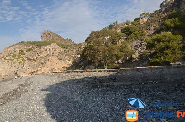 Végétations autour de la plage de Cantarrijan en Espagne