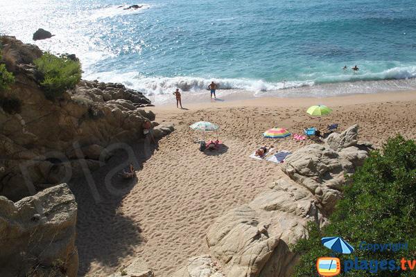 Criques De Cala Rod 224 Platja D Aro Catalogne Espagne