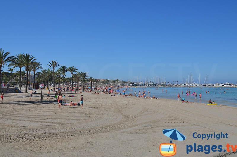 La plage d'Arenal à côté du port et du centre