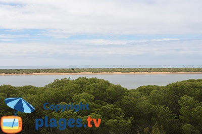 El Rompido et sa flèche de sable - Andalousie