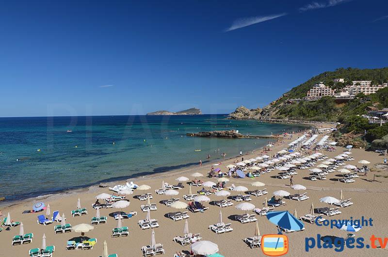 Es Figueral à Ibiza