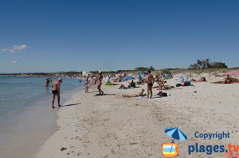 Es Trenc - une belle plage au sud est de l'ile de Majorque