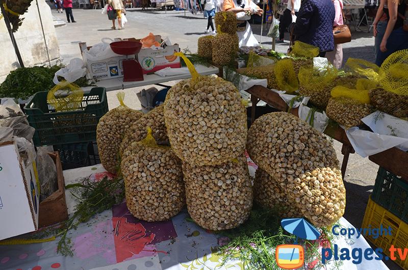 Escargots sur le marché de Cadix