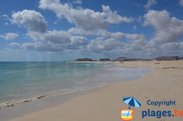 Plage avec des dunes à Corralejo - Iles Canaries