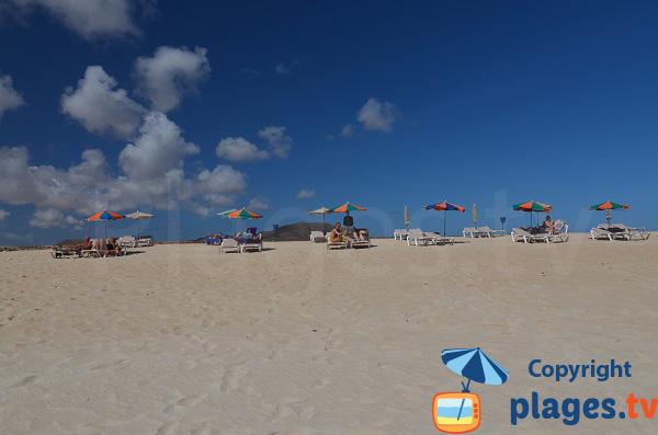 Plage privée sur la Grande Plage de Corralejo - fuerteventura