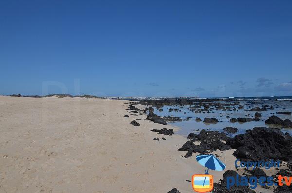 Grande plage de Corralejo avec de la pierre volcanique