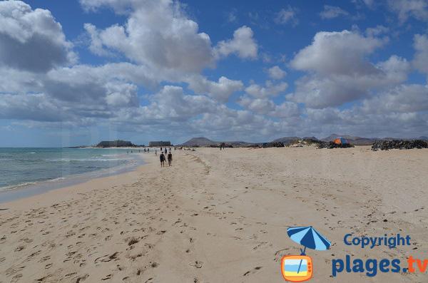 Flag Beach à Corralejo à Fuerteventura