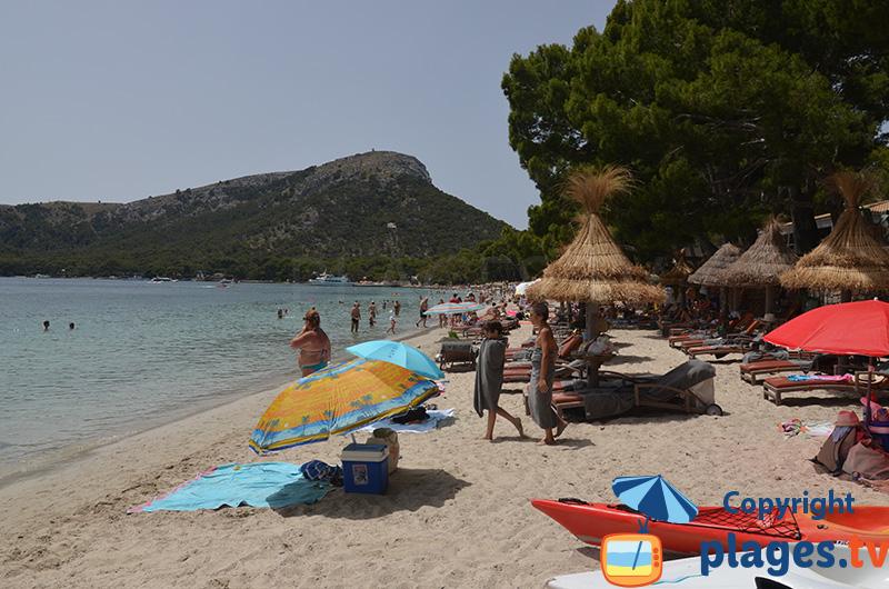 Formentor : une belle plage ombragée