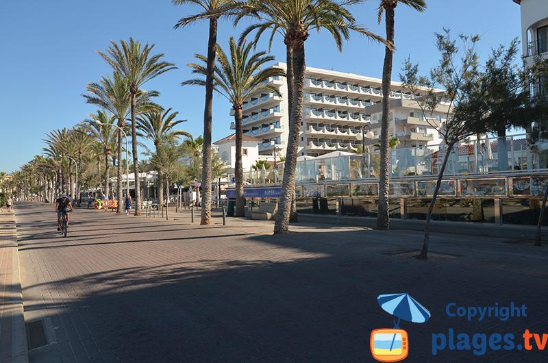 Bord de mer de Palma de Majorque