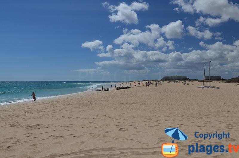 Plage au nord de Fuerteventura - Corralejo