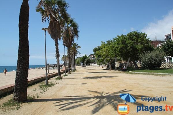 Promenade le long de la plage de Canet de Mar