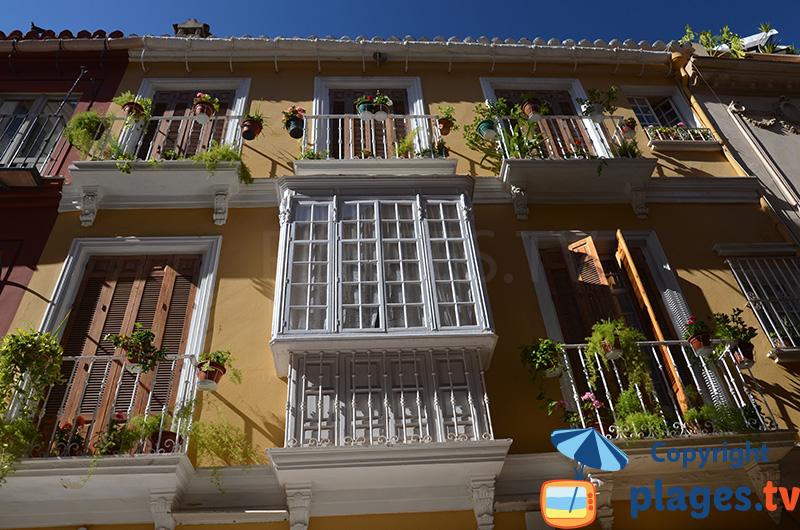 Belles facades dans le centre ville de Malaga