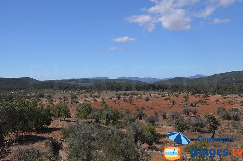 Paysage au nord de Sant Antoni à Ibiza