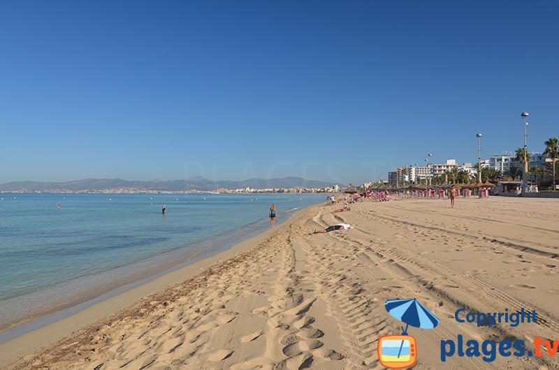 La grande plage de Palma de Majorque