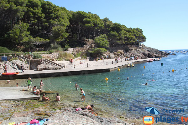 Where to go diving in Begur