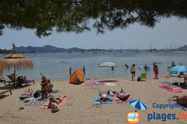 Plage dans le centre de Port Pollença - Majorque