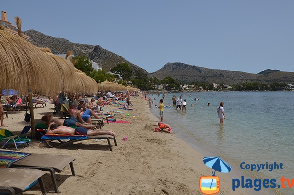 Photo de la plage d'Albercuix à Port Pollença - Majorque - Baléares