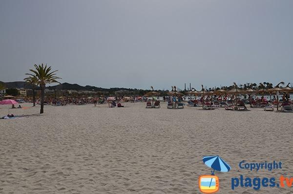Plage privée à proximité du port d'Alcudia - Majorque