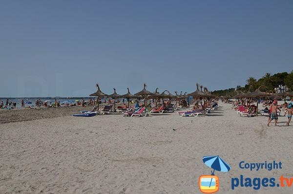 Plage d'Alcudia, vue vers le sud en direction de plage de Muro