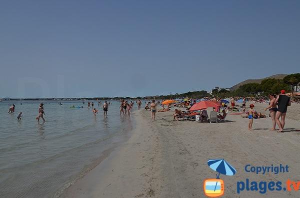Grande plage à proximité du centre ville de Port d'Alcudia