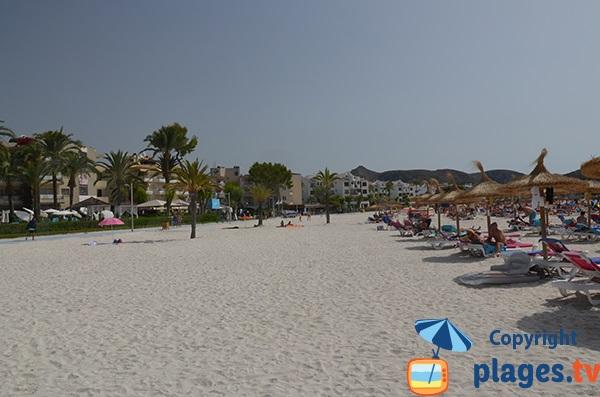 résidences le long de la plage d'Alcudia - Majorque
