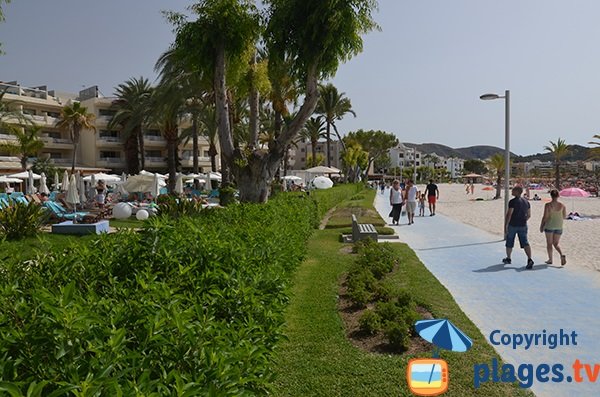 Promenade piétonne entre le port et le centre ville de Port d'Alcudia