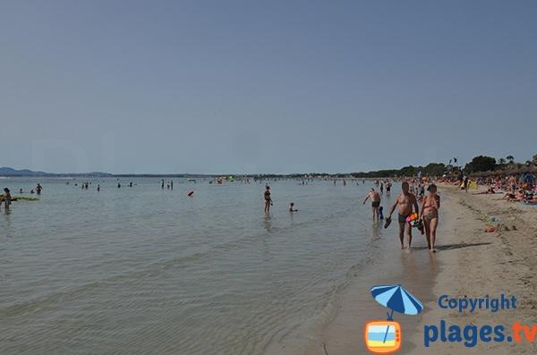 Plage d'Alcudia et de Playa Muro - Majorque