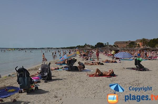 Environnement de la plage d'Alcudia proche du centre ville