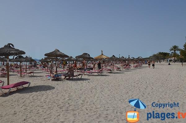Photo de la plage d'Alcudia à proximité de la rue Mercuri - Majorque