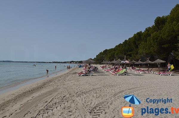 Plage Alcudia et plage privée - Majorque - Baléares