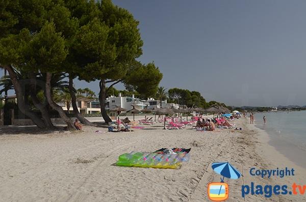 Photo de la plage Alcudia à Majorque - Baléares