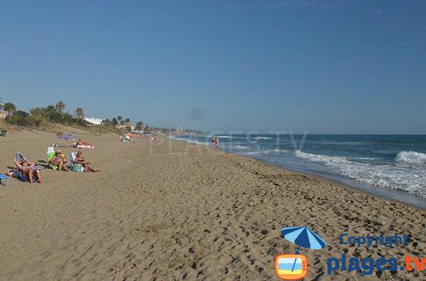 Alicate Playa - Marbella