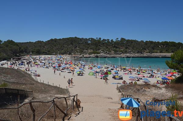 Photo de la plage s'Amarador à Majorque